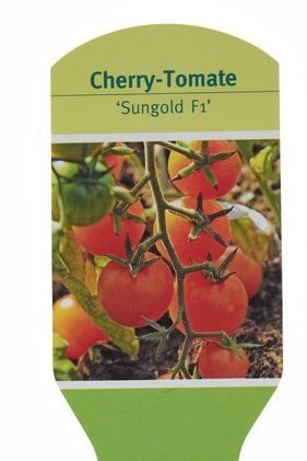 Cherry Tomate Sungold F1